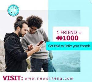 NewsLiteNg Income Program Review