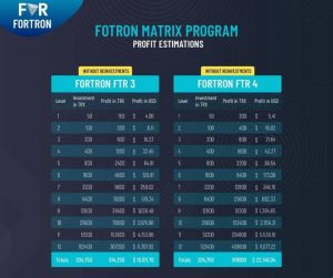 Fortron Smart Contract Review